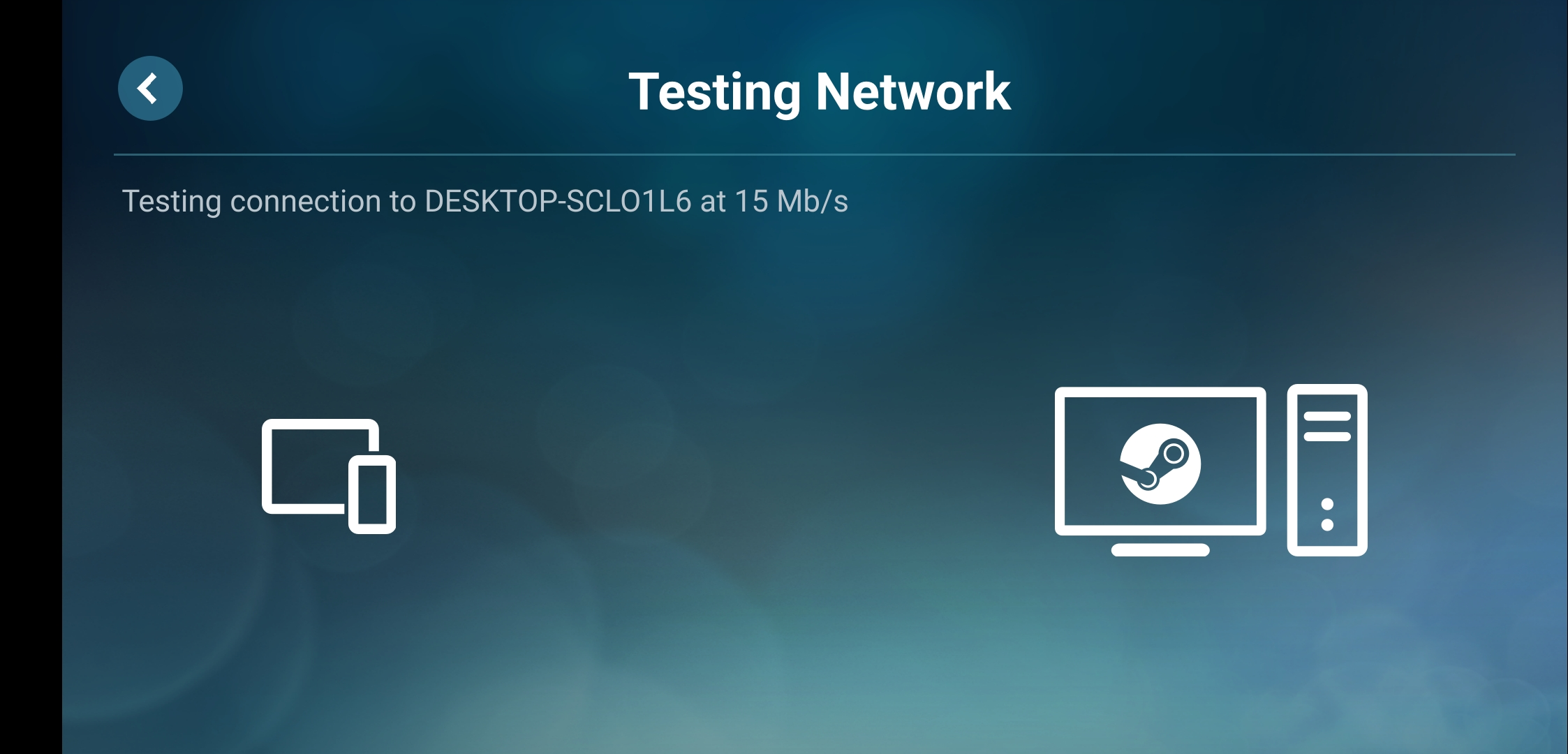 steam link network test